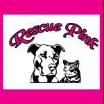 Rescue Pink w cat blk 3 copy